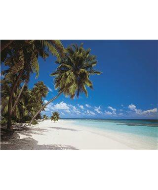 POSTER FOTOMURALE MALDIVES