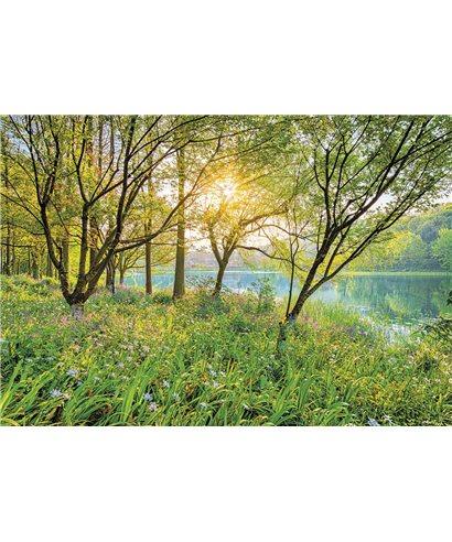 POSTER FOTOMURALE SPRING LAKE