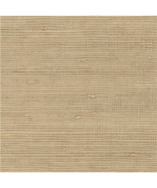 Grasscloth 488-418