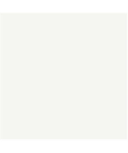 FERROPIU' BRILLANTE 450-001 Colore Bianco